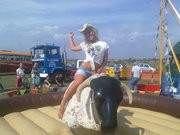Rodeo bull hire for parties and events